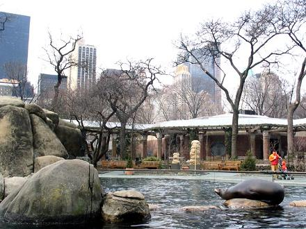 Zoo de Central Park | Voyage New York